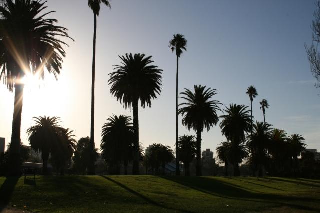Sunny Melbourne
