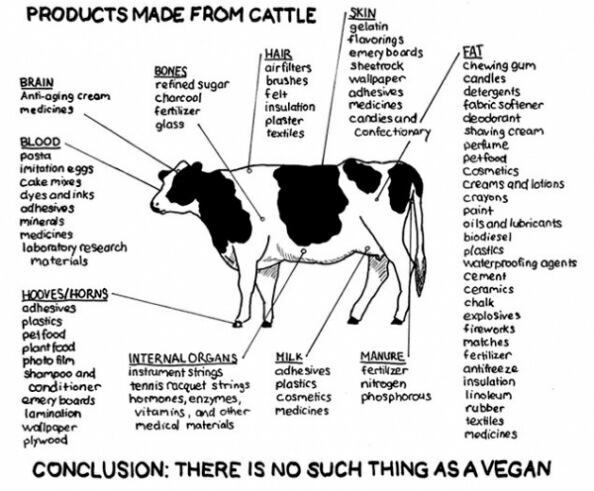 I have posted this one before too and find it very interesting. Are you vegan? Sure?